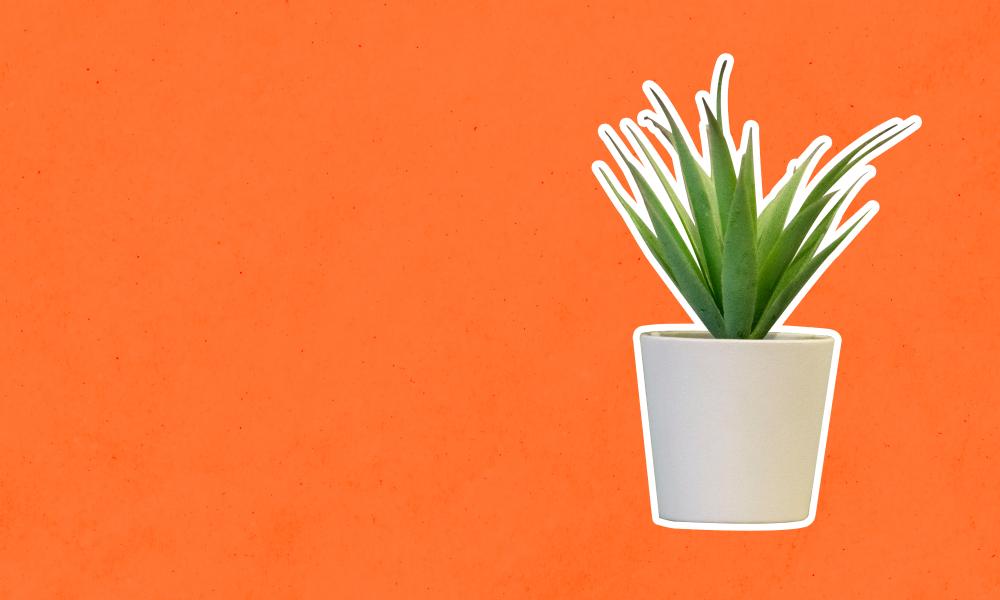 Você sabe o que é ter um estilo de vida minimalista? Descubra tudo sobre esse conceito!